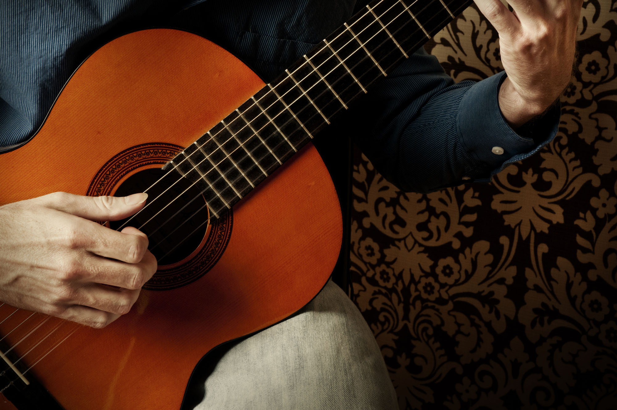 PRIVATE SPANISH GUITAR CONCERT AND DINNER